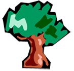 Icono web logotipo La Conchuela
